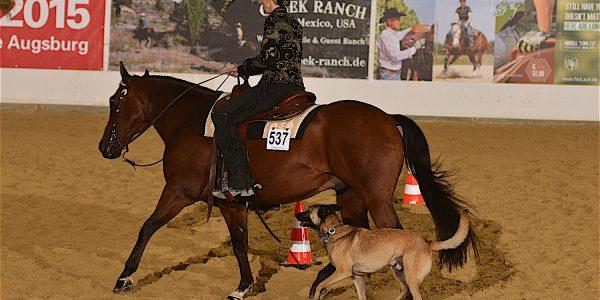 Horse & Dog-Trail Trophybestimmungen